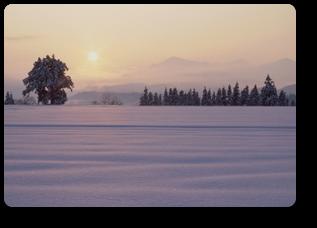 新潟雪景色